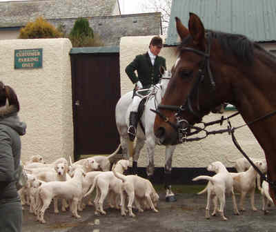 Photo of hounds at Hemyock's Boxing Day 2005 Meet.