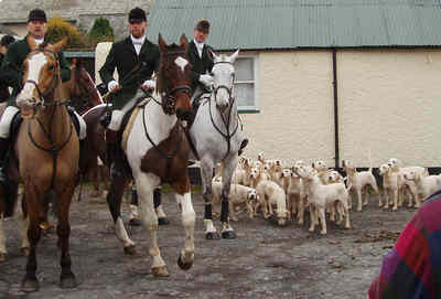 Photo of hounds and riders leaving.